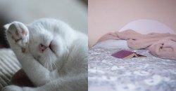 4 กิจกรรมที่เราควรทำเวลาที่นอนไม่หลับ